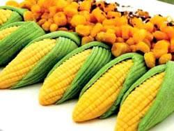 玉米的众多功效