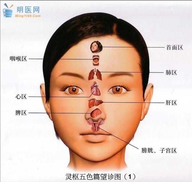 疾病隐患全写在脸上,16种面相暗藏健康危机