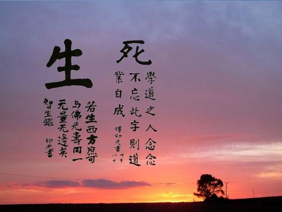 佛法原是教人了生死的,不可当哲学研究