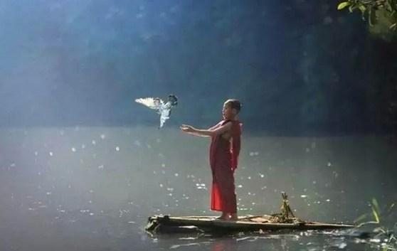 「一切法皆是佛法」的含义
